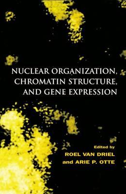 Nuclear Organization, Chromatin Structure and Gene Expression (Hardback)