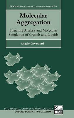 Molecular Aggregation: Structure analysis and molecular simulation of crystals and liquids - International Union of Crystallography Monographs on Crystallography 19 (Hardback)