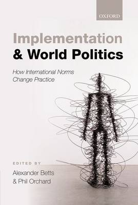 Implementation and World Politics: How International Norms Change Practice (Hardback)