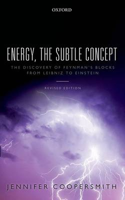 Energy, the Subtle Concept: The discovery of Feynman's blocks from Leibniz to Einstein (Paperback)