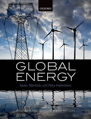 Global Energy: Issues, Potentials, and Policy Implications (Hardback)