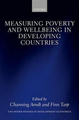 Measuring Poverty and Wellbeing in Developing Countries - WIDER Studies in Development Economics (Hardback)