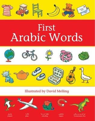 First Arabic Words (Paperback)