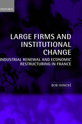 Large Firms and Institutional Change: Industrial Renewal and Economic Restructuring in France (Hardback)