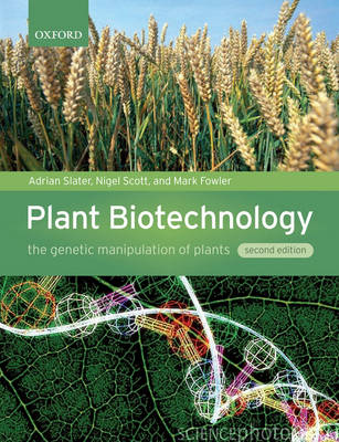 Plant Biotechnology: The genetic manipulation of plants (Paperback)