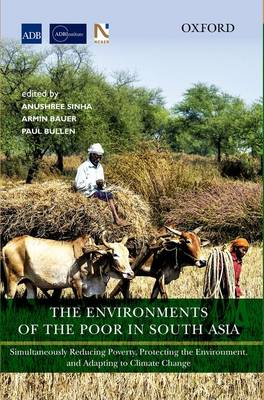 The Environments of the Poor in South Asia: Simultaneously Reducing Poverty, Protecting the Environment, and Adapting to Climate Change (Hardback)