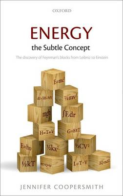 Energy, the Subtle Concept: The discovery of Feynman's blocks from Leibniz to Einstein (Hardback)