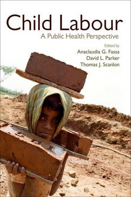 Child Labour: A Public Health Perspective (Paperback)