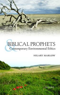 Biblical Prophets and Contemporary Environmental Ethics (Hardback)