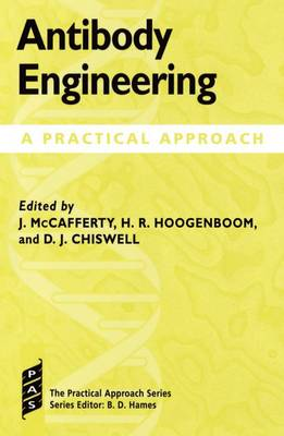 Antibody Engineering: A Practical Approach - Practical Approach Series 169 (Hardback)