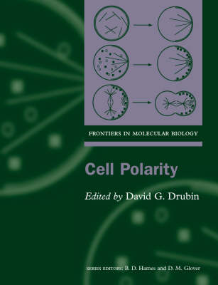 Cell Polarity - Frontiers in Molecular Biology 28 (Paperback)