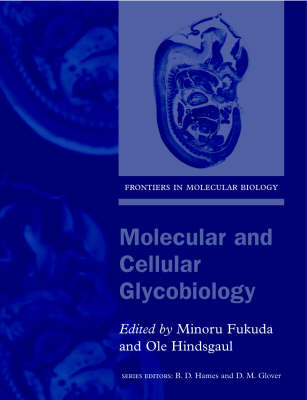 Molecular and Cellular Glycobiology - Frontiers in Molecular Biology 30 (Paperback)