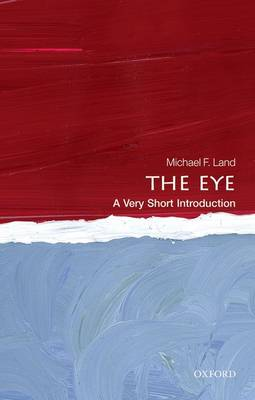 The Eye: A Very Short Introduction - Very Short Introductions (Paperback)