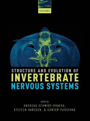 Structure and Evolution of Invertebrate Nervous Systems (Hardback)