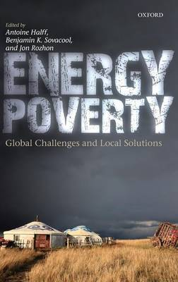 Energy Poverty: Global Challenges and Local Solutions (Hardback)