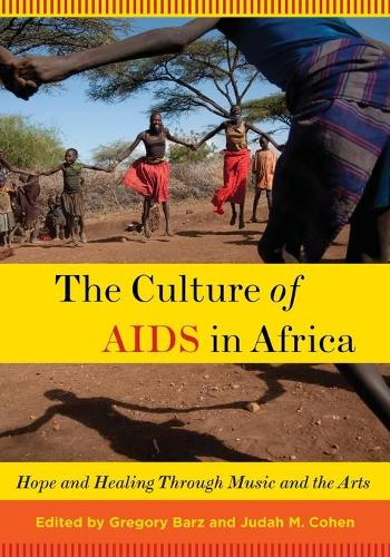 The Culture of AIDS in Africa: Hope and Healing Through Music and the Arts (Paperback)