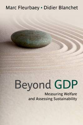 Beyond GDP: Measuring Welfare and Assessing Sustainability (Hardback)