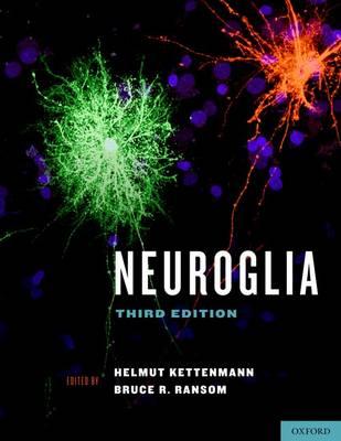 Neuroglia (Hardback)