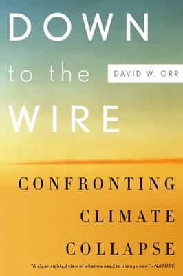 Down to the Wire: Confronting Climate Collapse (Paperback)