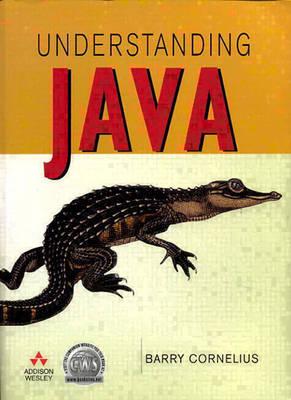 Understanding Java (Paperback)