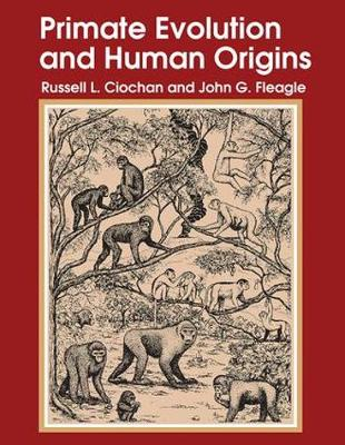 Primate Evolution and Human Origins (Paperback)