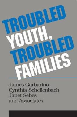 Troubled Youth, Troubled Families: Understanding Families at Risk for Adolescent Maltreatment (Paperback)