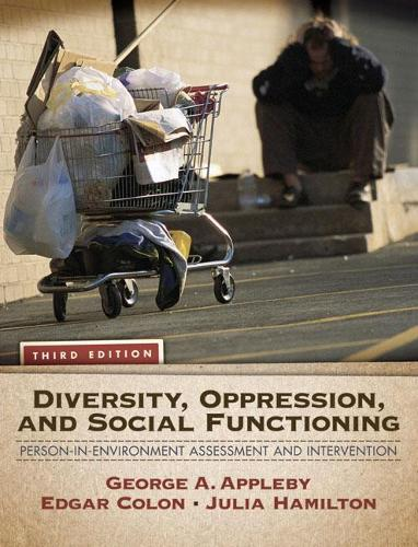 Diversity, Oppression, and Social Functioning: Person-In-Environment Assessment and Intervention (Paperback)