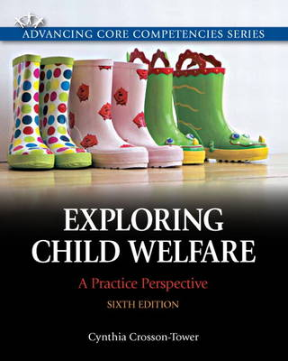 Exploring Child Welfare: A Practice Perspective (Paperback)