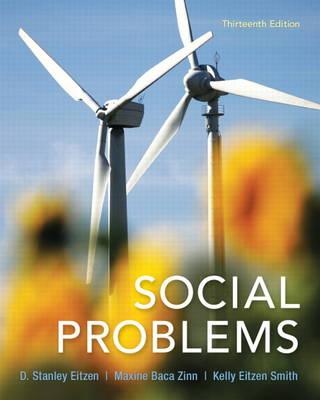 Social Problems (Paperback)