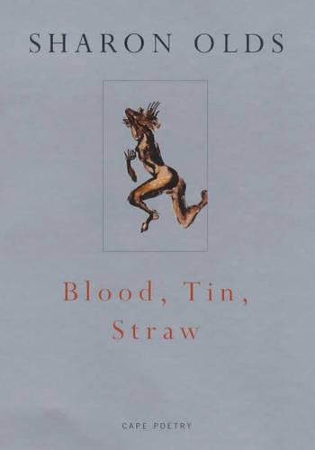 Blood, Tin, Straw (Paperback)