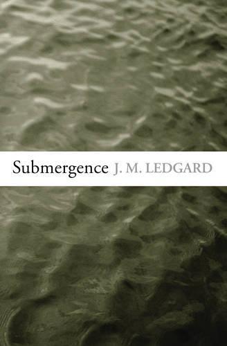 Submergence (Hardback)