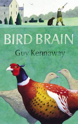 Bird Brain (Hardback)