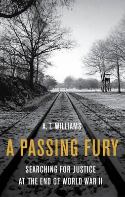 A Passing Fury, A (Hardback)