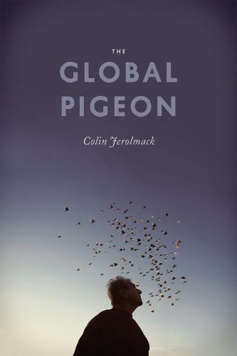 The Global Pigeon - Fieldwork Encounters and Discoveries (Hardback)