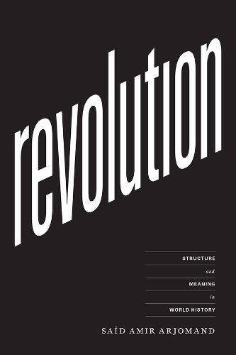 Revolution: Structure and Meaning in World History (Hardback)