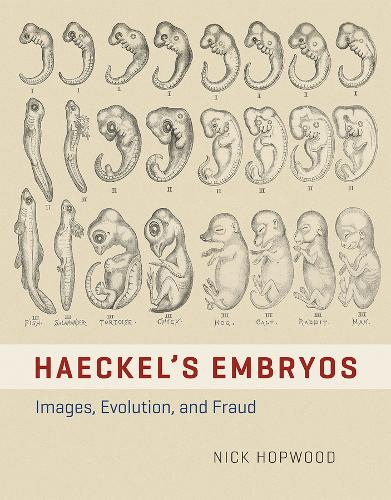Haeckel's Embryos: Images, Evolution, and Fraud (Hardback)