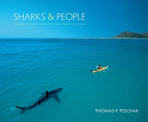 Sharks and People: Exploring Our Relationship with the Most Feared Fish in the Sea (Hardback)
