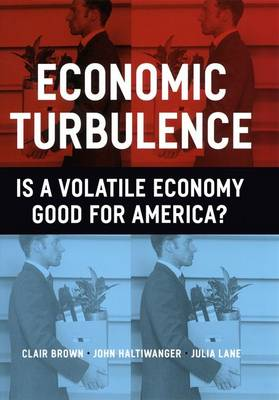 Economic Turbulence: Is a Volatile Economy Good for America? (Hardback)