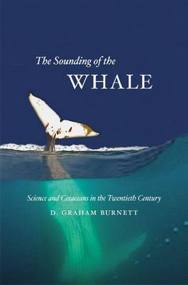 Sounding of the Whale: Science and Cetaceans in the Twentieth Century (Hardback)