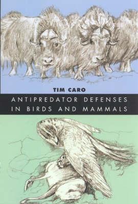 Antipredator Defenses in Birds and Mammals (Hardback)