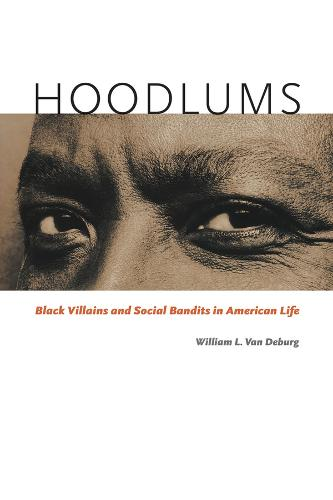 Hoodlums: Black Villains and Social Bandits in American Life (Paperback)