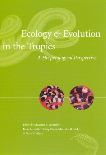 Ecology and Evolution in the Tropics: A Herpetological Perspective (Paperback)
