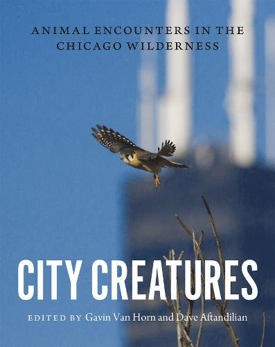 City Creatures: Animal Encounters in the Chicago Wilderness (Hardback)