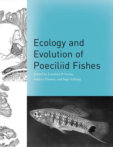 Ecology and Evolution of Poeciliid Fishes (Hardback)