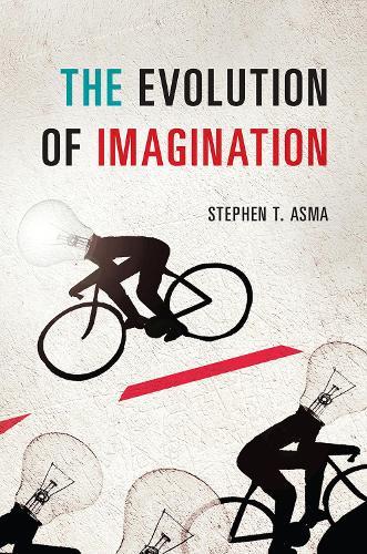 The Evolution of Imagination (Hardback)