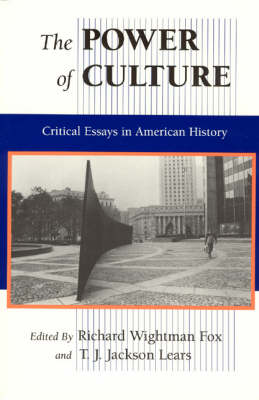 The Power of Culture: Critical Essays in American History (Paperback)