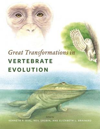 Great Transformations in Vertebrate Evolution (Paperback)