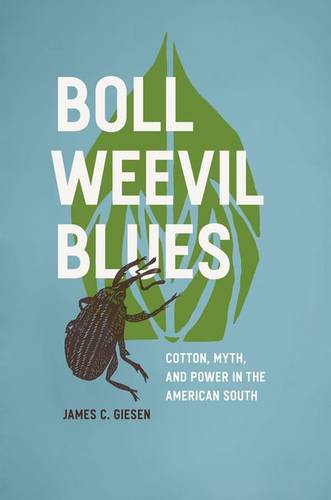 Boll Weevil Blues: Cotton, Myth, and Power in the American South, 1892-1930 (Hardback)