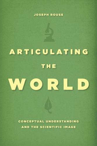 Articulating the World: Conceptual Understanding and the Scientific Image (Paperback)