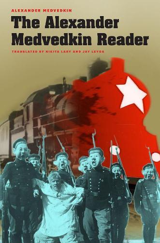 The Alexander Medvedkin Reader - Cinema and Modernity (Hardback)
